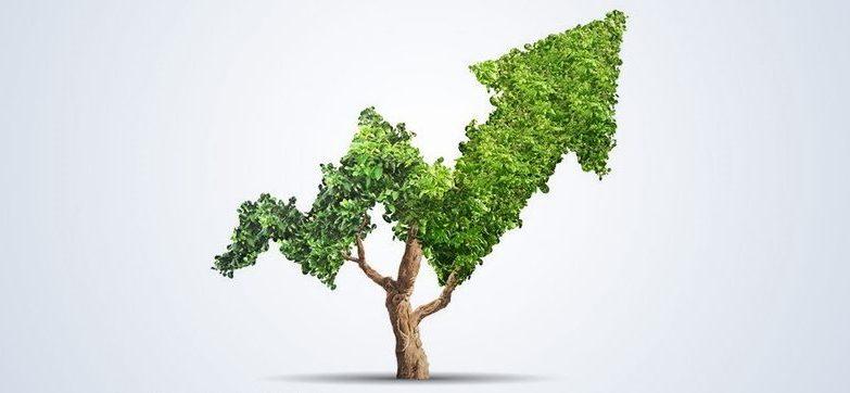 Impact Investing as an Emerging Asset Class
